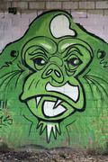 Stock Photo of Green Orangutan head mural street art Dusseldorf North RhineWestphalia