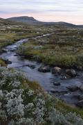 Mountain stream in the fjell landscape in autumn Ringebufjellet Norway Europe - stock photo