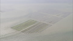 AERIAL Ireland-Oyster Beds In Donegal Bay Stock Footage