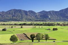 View of the Kochelmoos region Upper Bavaria Bavaria Germany Europe - stock photo