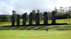 Easter Island Statues 38 HD - stock footage