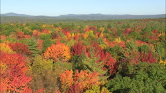 AERIAL United States-Woods In Fall Colours - stock footage