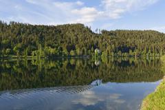 Lake Erlaufsee near Mariazell Styria partly Lower Austria Austria Europe Stock Photos