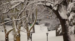 Central Park In Snow 02 HD Stock Footage