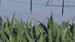 Pivot irrigation 3 Stock Footage