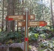 Stock Photo of Signpost with Corsican names to the bomb crater U Compuleddu Col de Bavella