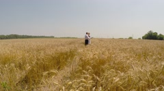 Chiefs agrofirm inspect field of ripe wheat. - stock footage