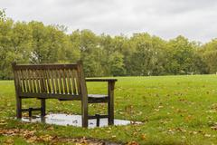 Lonely bench on the meadow - stock photo