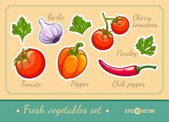 Set of fresh vegetables cherry tomato pepper garlic chili and parsley - stock illustration