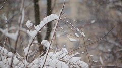Central Park In Snow 18 HD Stock Footage