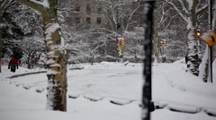 Central Park In The Snow 09 HD Stock Footage