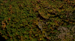 AERIAL United States-Flight Looking Down Over State Park And Lookout Tower Stock Footage
