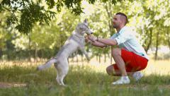 man and his dog in the park, husky dog 3 - stock footage
