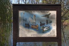 Sign on feeding ban of waterfowl in German public park Furth Middle Franconia - stock photo