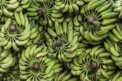 Stock Photo of Banana stalks Broadway Market Ernakulum Kerala India Asia