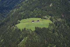 Alp with farmhouses surrounded by forest near Assling East Tyrol Austria Europe - stock photo