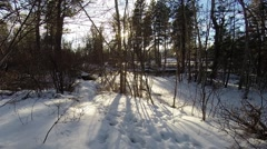 Winter Background Snowy River and Sun Stock Footage