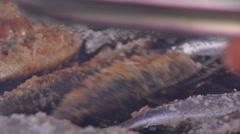 Sardines roasting on coal 2 Stock Footage