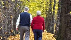 Senior couple hand in hand walk on autumn alley, eternal love - stock footage