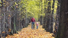 Man and cute little child walking together on beautiful autumn alley, park Stock Footage