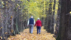 Old happy couple hand in hand on autumn alley, ever lasting love, romantic Stock Footage