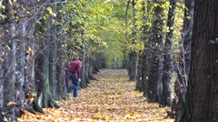 Father and son playing on autumn alley, hide and seek, generous nature, forest Stock Footage