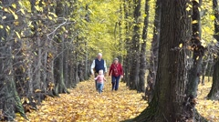 Grandparent running to catch grandson, playing together in autumn park, golden  Arkistovideo