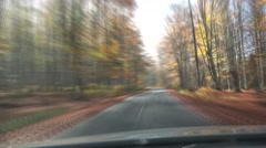 Drive through autumn colorful forest, front view of trees from car windshield Stock Footage