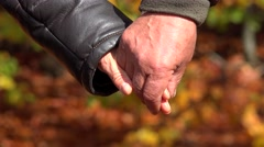 Grandparents holding hands, parents staying together, autumn nature Stock Footage