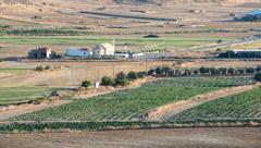 Agriculture farmland Cyprus - stock photo