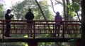 4k Visitors on a chinese bridge in tropical garden Madeira Footage
