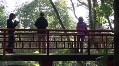 4k Visitors on a chinese bridge in tropical garden Madeira Stock Footage