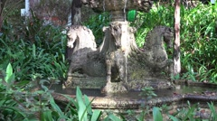 4k Unicorn spring fountain in tropical garden Madeira Stock Footage