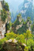 Stock Photo of Avatar Mountains with vertical quartzsandstone pillars Zhangjiajie National