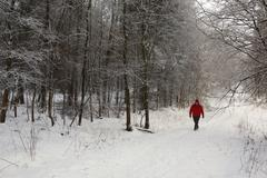 Walker on a snow covered country lane - stock photo