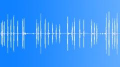 Barking Dog Sound Effect