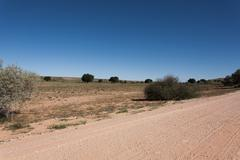 A view from Kgalagadi Transfontier Park, South Africa Stock Photos