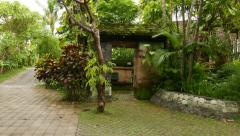 Green mossy stony gate, yard entrance, tropical plants and greenery Stock Footage