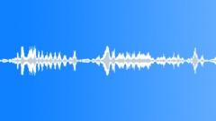 Hippopotamus 1 Sound Effect