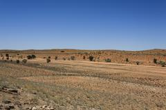Panorama from Kgalagadi National Park, South Africa Stock Photos