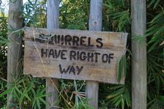 Wooden sign attection the Right of squirrels Stock Photos