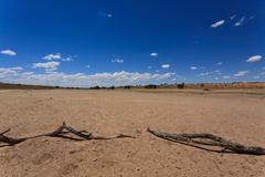 Panorama from Kgalagadi National Park, South Africa - stock photo