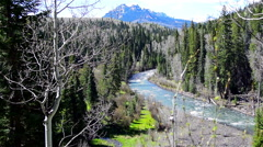 River running through the mountains of Colorado Stock Footage