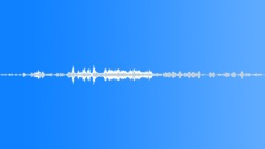Coyote Sound Effect