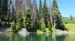 POV-Gliding by shoreline beautiful mountain lake pine trees and clear blue sky Stock Footage