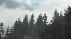 Morning, Hutsul region, village Stock Footage