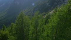 Aerial - Spring trees of mountain area Stock Footage