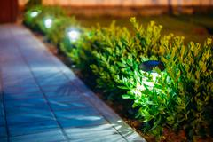 Solar Garden Light, Lanterns In Flower Bed. Garden Design Stock Photos