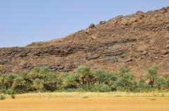 Date palms in front of a weathered hill Rachid oasis Tagant region Mauritania - stock photo