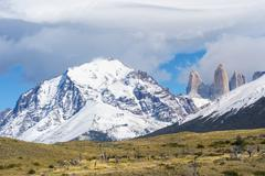 Cuernos del Paine and the Torres Torres del Paine National Park Chilean - stock photo